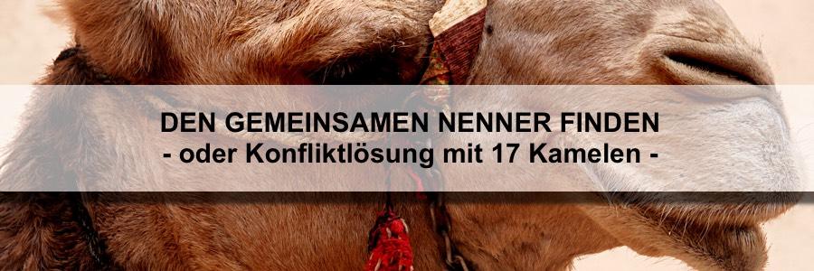 Den gemeinsamen Nenner finden - oder Konfliktlösung mit 17 Kamelen