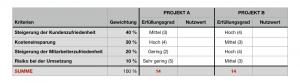 Nutzwertanalyse - Bewertung der Optionen